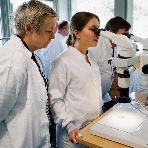 Das Datographenwerk unter dem Mikroskop weckt große Neugierde.