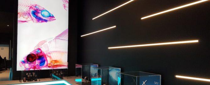 Seiko errichtet einen Pop-Up-Store für die Prospex-Modelle in Berlin.